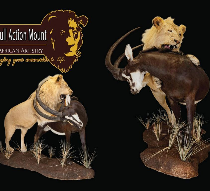Action mount