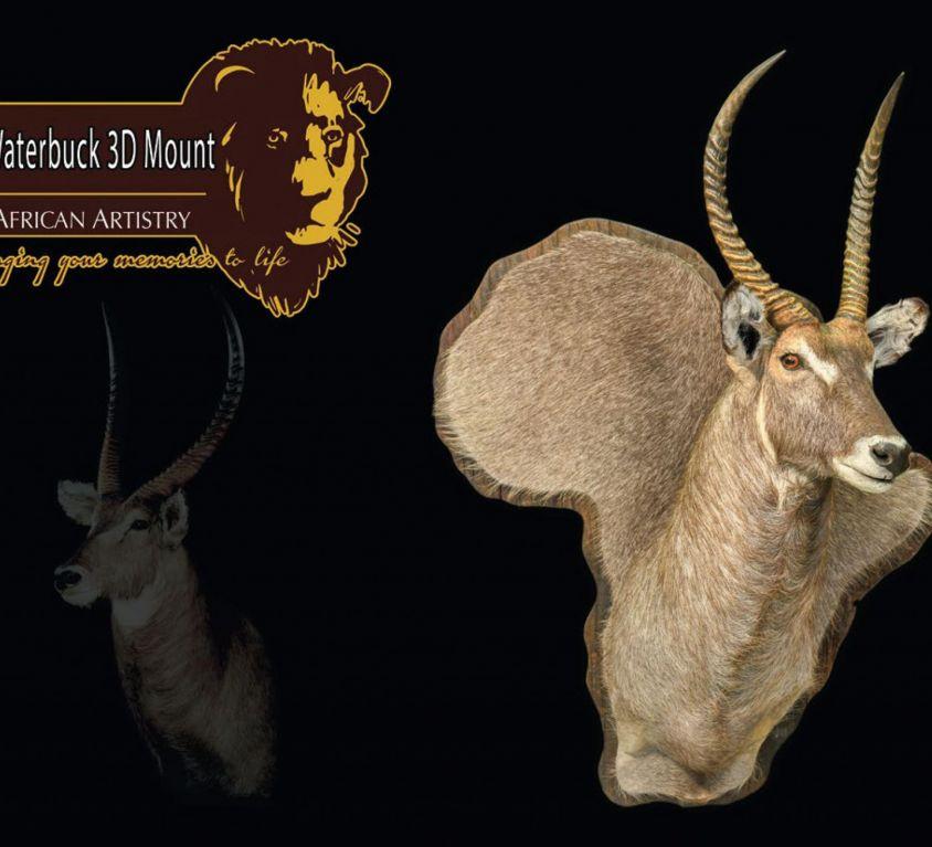Special mounts